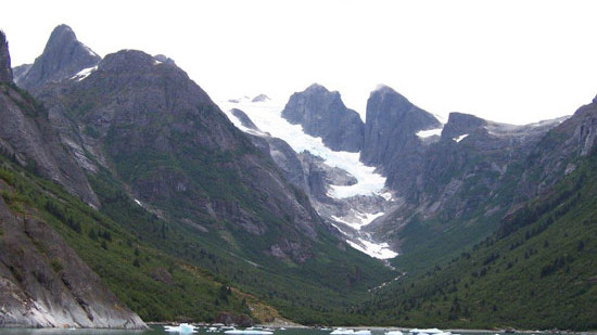 LeConte Ice Field