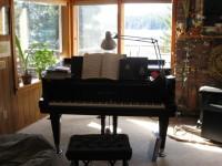 830 Mitkof Piano