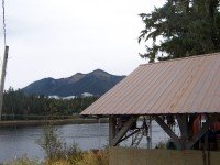 Alaska Cabin for Sale with Eleven Plus Acres